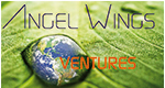 Angel_Wings_Ventures1